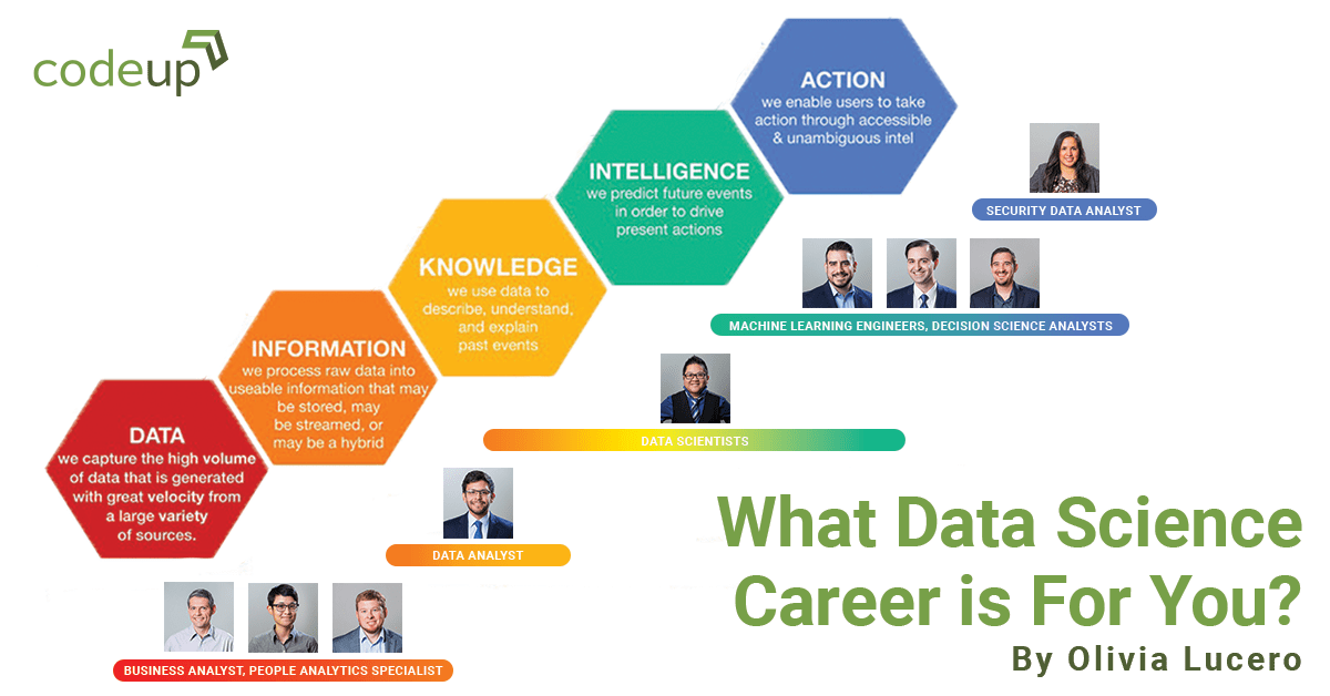 What Data Science Career is For You?
