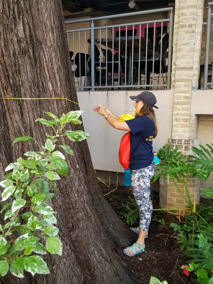 Woman attaching yellow ribbon to tree