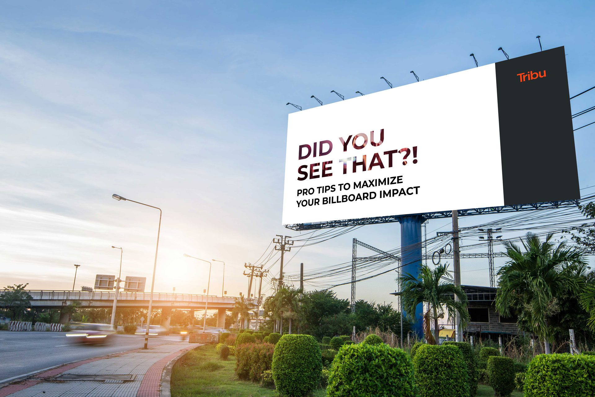 Did you see that?! Pro tips to maximize your Billboard impact